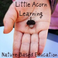 littleacornlearning