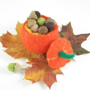 Treasure Pumpkin Wet Felting Kit