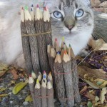 Colored Twig Pencil Set